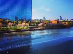 【春は桜を愉しめる!】リバーサイドに大阪城を一望できる最高のロケーション!LOHASなシェアスペース