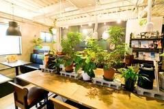【隠れ家カフェを貸し切る!】イベントや懇親会、結婚式の二次会などに最適!プロジェクター無料レンタル可能