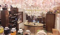 【渋谷駅徒歩2分】30分50円のオープン会議室「電源・高速Wi-Fi完備」ESOLA会議室