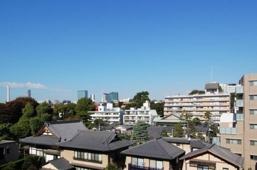 広尾駅徒歩5分 TEETER TOTTER(ティーター トッタ―)