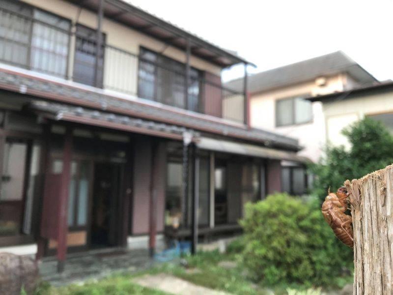 千葉市若葉区大宮台の縁側からやさしい光の入る和室です。6+8畳で宴会や打合せなどゆっくり過ごせます。